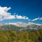 12-Razgled iz vrha Pršivca