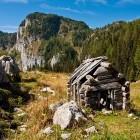 14-Planina Viševnik pod Pršivcem