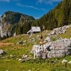 16-Planina Viševnik pod Pršivcem