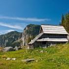 17-Planina Viševnik pod Pršivcem