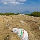 19-Pot iz Pece in Uršlja gora v ozadju