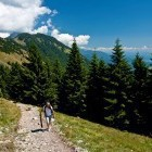 6-Just below the summit of Kriška gora