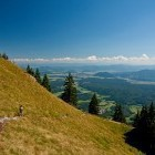 13-Spust iz Kriške gore proti Gozdu