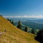13-Descent from Kriška gora towards Gozd