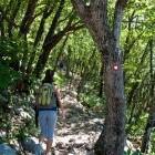 3-Nanos - the steep path