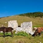 9-Struška - Planina Seča
