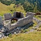 10-Struška - Planina Seča