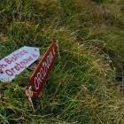 14-Črna prst - Signpost