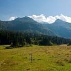 27-Črna prst - Meadows above Bohinjska Bistrica