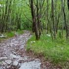 11-Na poti iz Slavnika