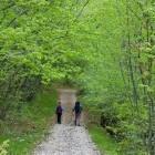 13-Na poti iz Slavnika