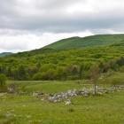 1-Planina Jegno, v ozadju Slavnik