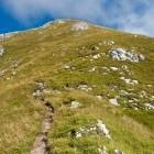 6-Tik pod vrhom Storžiča