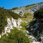 22-Spust proti planini Poljana (pogled nazaj)