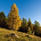 7-Jesen je v deželi