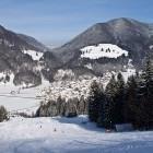 7-FIS proga Podkoren