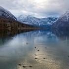 17-Zgodnja pomlad ob jezeru