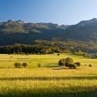13-Travniki med jezerom in Staro Fužino