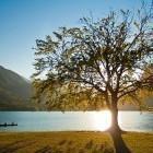 1-Bohinjsko jezero