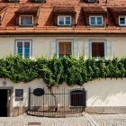 13-The oldest vine in the world - Maribor