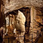 15-Postojnska jama