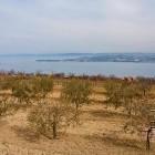 1-Konec zime nad Koprom