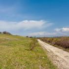 11-Ob razglednih travnikih