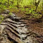 11-Interesting rock layers near the waterfall