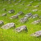 32-Vojaško pokopališče v Solkanu