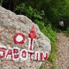 5-Sabotin - Zavijemo levo v gozd