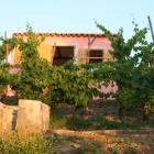 6-Houses of Slovenian Istria
