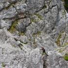 12-Between rocky boulders