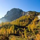 15-Fotografije Slotrips gorskih & planinskih vodnikov