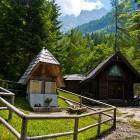 17-Jasenje alpine meadow