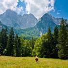 18-Jasenje alpine meadow