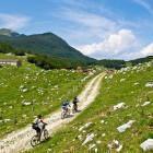 15-Zaprikraj alpine meadow below Mt. Krn