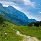 19-Zaprikraj alpine meadow below Mt. Krn