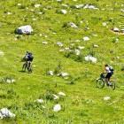 20-Zaprikraj alpine meadow below Mt. Krn