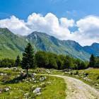 22-Zaprikraj alpine meadow below Mt. Krn