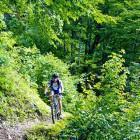 28-Interesting trail