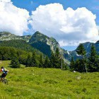 30-Golobar alpine meadow