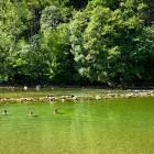 30-Kolpa river