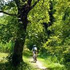 "1-Start in ""Radenci Ob Kolpi"" village"