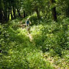 18-The rough part of the trail towards Vinica