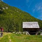 9-Na planini Blato
