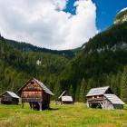 10-Planina Blato nad Bohinjem