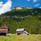 11-Planina Blato nad Bohinjem
