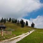 7-Gojška planina