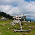 10-Stovniške bajte pri Veliki planini