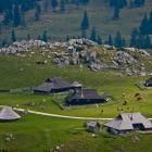 22-Pastirsko naselje na Veliki planini